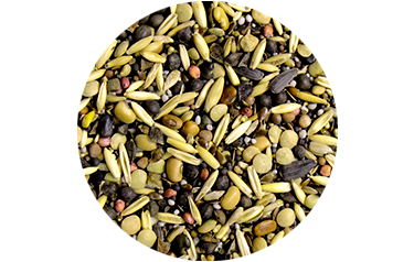Cover Crop Cocktail Mix - Advance Cover Crops